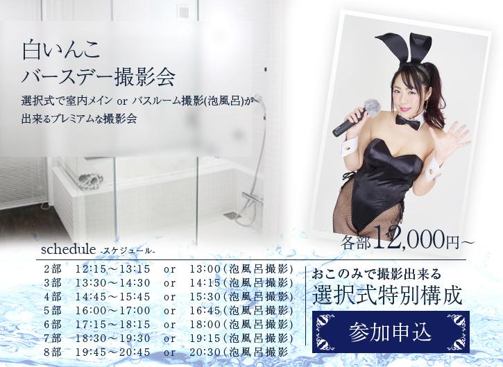 2019年11月10日 (日) ☆白いんこ バースデー企画☆スタジオ室内&泡風呂 撮影会(1対1)
